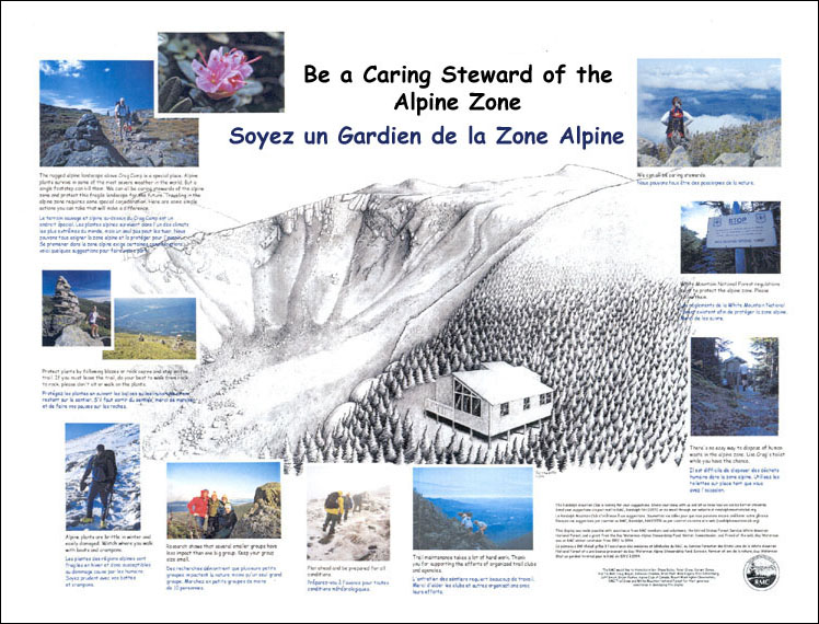 Be a Caring Steward of the Alpine Zone
